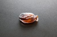 <p><em>Date Series (Medjool)</em>, 2017<br /> Mold-blown glass, variable dimensions, 50 uniques</p>